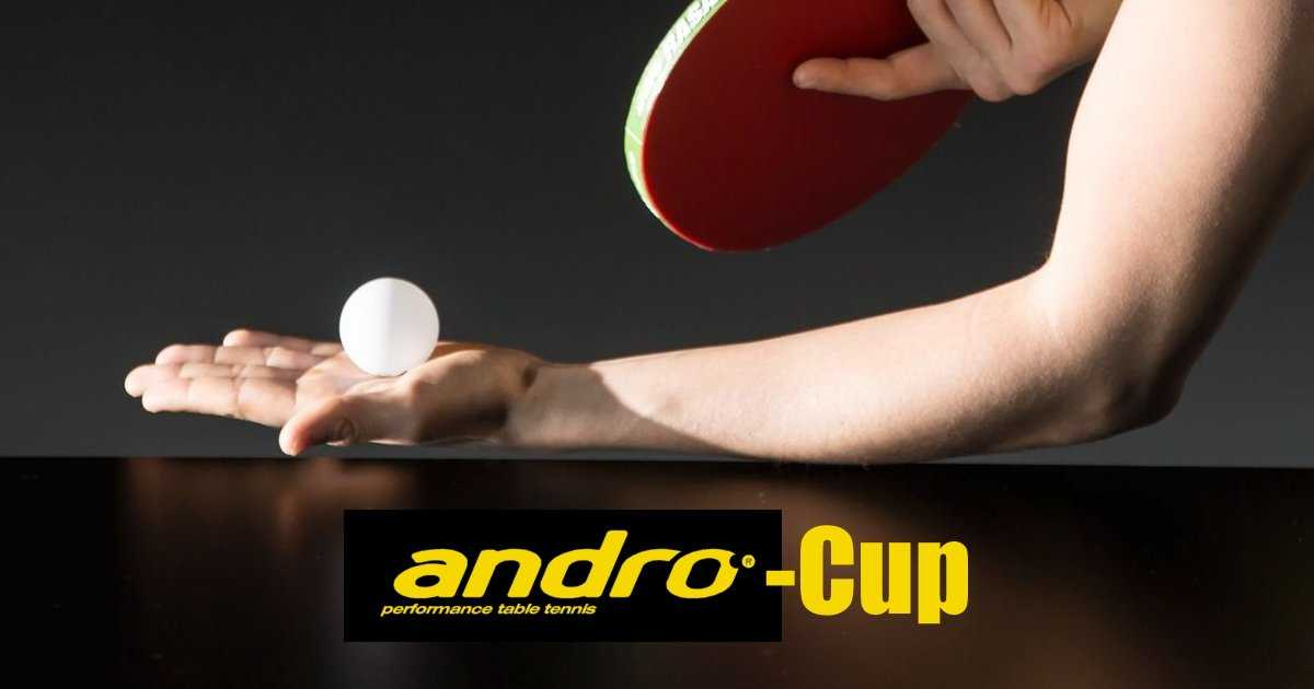 Andro Cup 2018